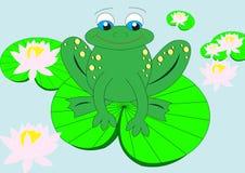 青蛙百合水 免版税库存照片