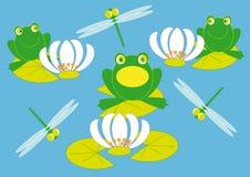 青蛙百合 库存照片
