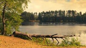 青蛙的Eye湖, masuria区 免版税图库摄影