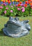 青蛙石头 免版税库存照片
