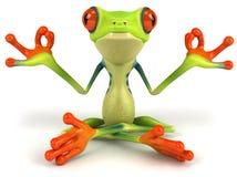 青蛙禅宗 库存图片
