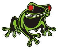 青蛙红色眼睛 库存图片