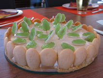 青蛙蛋糕 免版税库存照片