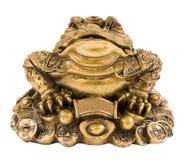 青蛙货币 库存照片