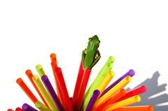 青蛙跳准备好 库存照片