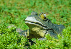 青蛙雕塑在绿叶中的 图库摄影