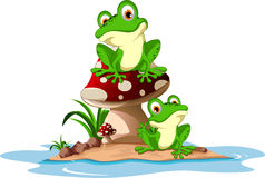 青蛙滑稽的蘑菇开会 库存照片
