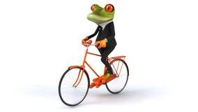 青蛙 股票视频