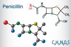 青霉素PCN分子一般惯例  这是一个小组抗生素 结构化学式和分子模型 向量例证