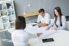 青年人在办公室 免版税库存图片