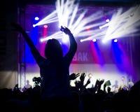 青年人照片获得乐趣在摇滚乐音乐会,活跃生活方式, 免版税库存照片