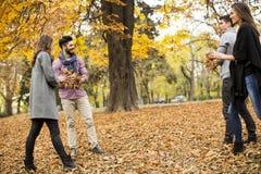青年人获得乐趣在秋天公园 免版税库存图片