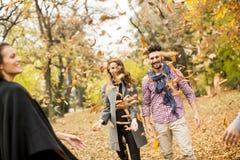 青年人获得乐趣在秋天公园 库存图片
