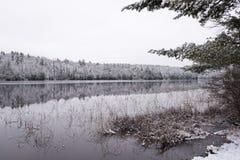 静止在冬天森林里 在寂静的湖水的反射 库存图片