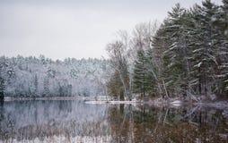 静止在年轻冬天森林里 在寂静的湖水的反射 免版税库存照片