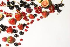静物画成熟夏天莓果13 库存照片