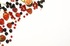 静物画成熟夏天莓果14 库存图片