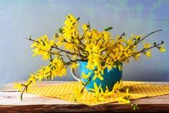 静物画春天花束黄色连翘属植物 免版税库存图片
