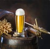 静物画用啤酒 库存照片