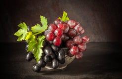 静物画用在古色古香的铜罐子杯子的葡萄 免版税库存图片