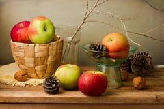 静物画用新鲜的苹果和杉木玉米 免版税库存照片