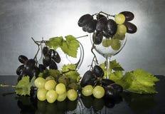 静物画用新鲜的葡萄、叶子和玻璃 免版税库存图片
