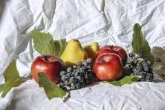 静物画用苹果和梨 免版税库存照片