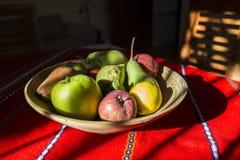 静物画-碗果子和阳光 库存照片