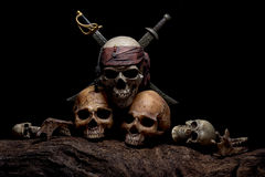 静物画与两块人的头骨的绘画摄影 免版税库存照片