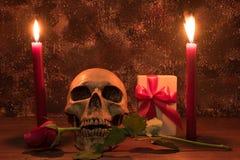 静物画与人的头骨,礼物的绘画摄影,上升了 免版税库存图片