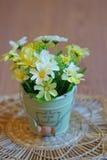 静物画-在罐的花 库存照片