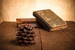 静物画-堆旧书和杉木锥体在老木ta 免版税库存照片