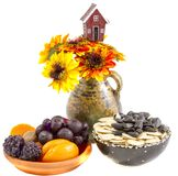 静物画开花向日葵、果子和莓果,种子 免版税库存照片