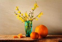 静物画春天花束黄色连翘属植物桔子 库存照片