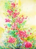 静物画桃红色花水彩绘画例证设计 图库摄影