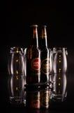 静物画用两个瓶超级浓味啤酒 库存照片