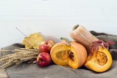静物画用南瓜、麦子的苹果和耳朵 白色木 免版税库存图片
