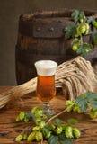 静物画用啤酒 免版税库存图片