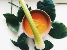 静物画用奶油色汤 免版税库存图片