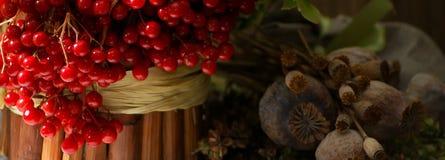 静物画用干草本,明亮的红色荚莲属的植物莓果,罂粟种子箱子,花对正统基督徒假日,蜂蜜 免版税图库摄影