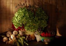 静物画用干草本,明亮的红色荚莲属的植物莓果,罂粟种子箱子,花对正统基督徒假日,蜂蜜 免版税库存照片