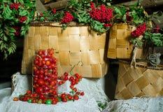 静物画用成熟蕃茄 库存照片