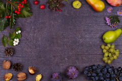 静物画用果子和草莓-苹果,李子,葡萄,梨,叶子,杉木锥体,无花果,花,栗子 顶视图 鲁斯 免版税库存图片