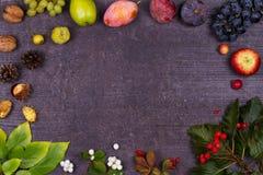 静物画用果子和草莓-苹果,李子,葡萄,梨,叶子,杉木锥体,无花果,花,栗子 顶视图 鲁斯 免版税图库摄影