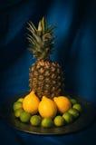 静物画用柑橘水果和菠萝 免版税库存照片