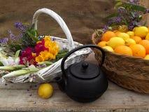静物画用桔子和花 库存图片