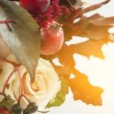 静物画用秋天苹果,玫瑰色和狂放的葡萄 图库摄影