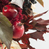 静物画用秋天苹果,玫瑰色和狂放的葡萄 库存照片