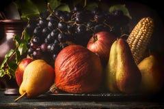 静物画用秋天水果和蔬菜:苹果,梨,葡萄,南瓜,在黑暗的土气桌上的玉米棒子 图库摄影