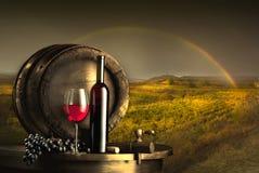 静物画用红葡萄酒 免版税库存照片